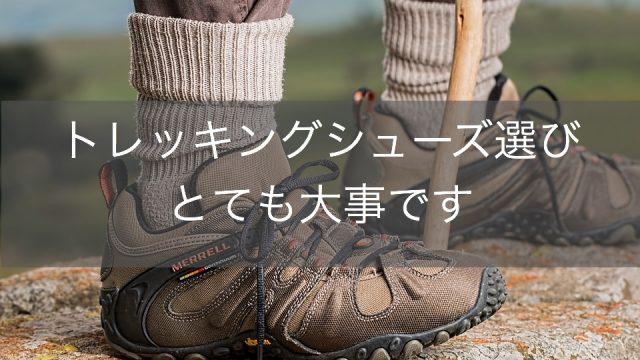 登山ダイエット 効果 靴